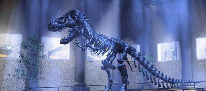 Что случилось с динозаврами?