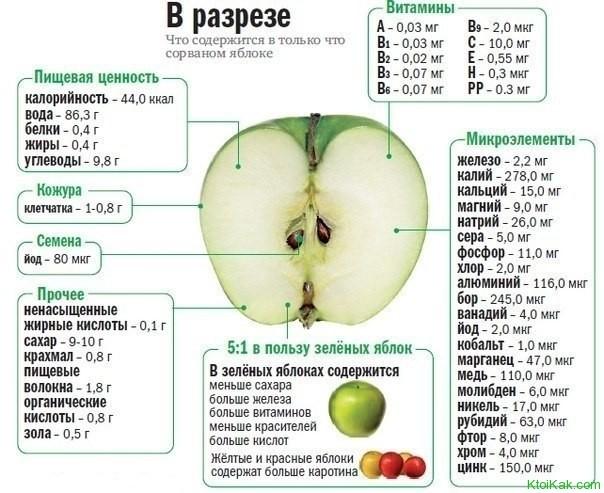 Чем полезны яблоки?