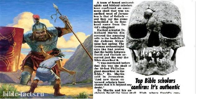 Нашли скелет Голиафа