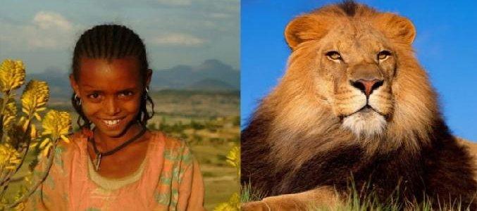 Животные и природа в Библии