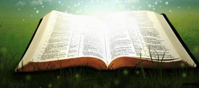 Занимательные библейские переводы