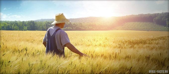 Притча о крестьянине