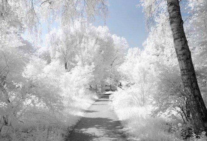 Невероятная, завораживающая зима