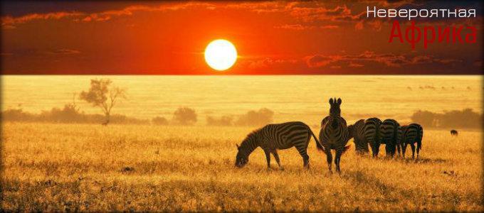 Невероятная Африка