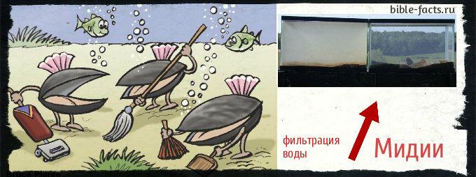 Морепродукты, которые опасно есть!