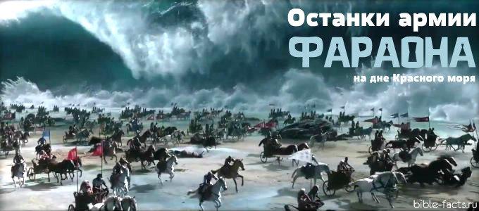 Останки армии фараона на дне Красного моря