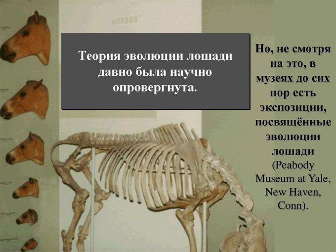 Жертвы эволюции