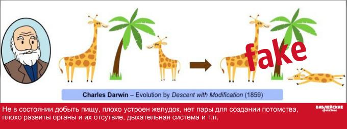 Большие проблемы эволюции