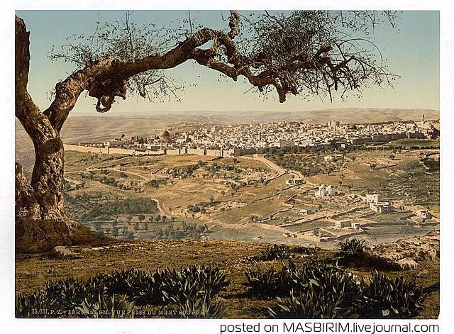 Интересные факты об Иерусалиме
