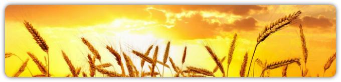 10 заповедей душевного равновесия и размышления о Боге