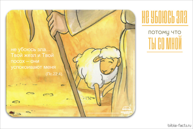 Посох пастуха - интересные факты