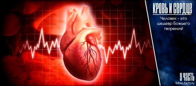 Кровь и сердце - как чудно, дивно я устроен
