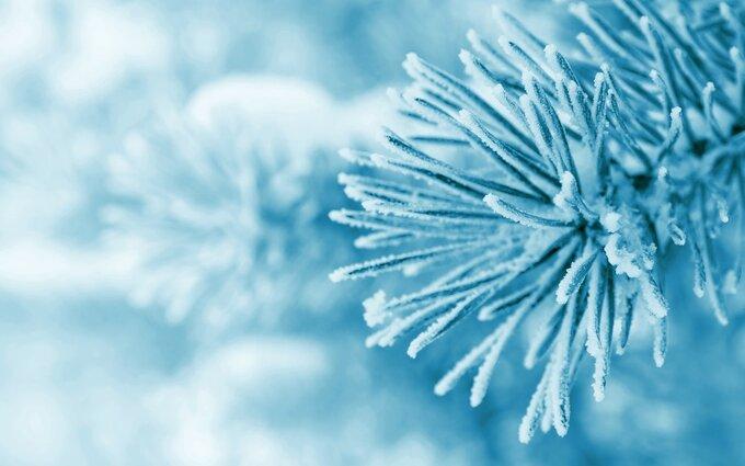 Зима, которая очаровывает своей красотой