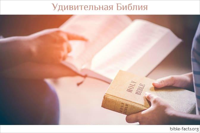 Занимательные  библейские факты | 38 выпуск