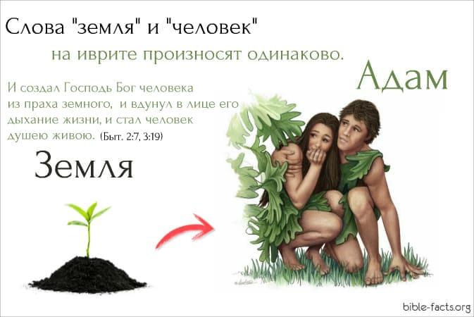 Происхождение человека из земли. Неожиданные открытия