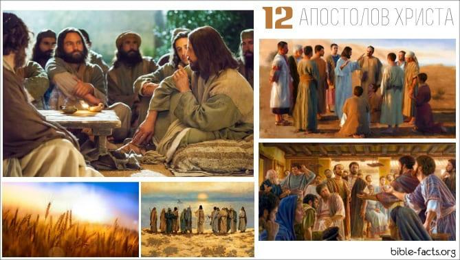 Интересные факты об учениках Иисуса